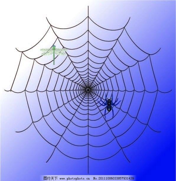 蜻蜓 蜘蛛网制作 矢量图 蜘蛛网矢量图 蜻蜓矢量图 蜘蛛矢量图 昆虫