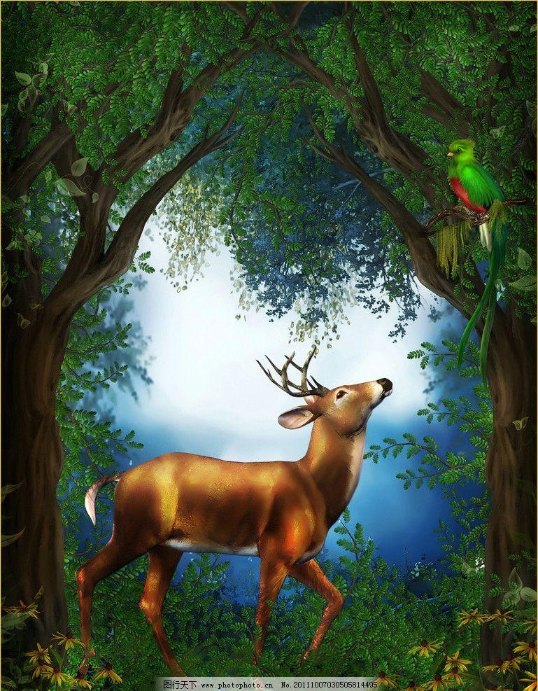 梦幻森林 鹦鹉 麋鹿 童话世界 花草 树林 草地 绿地 绿草 菊花 绿树