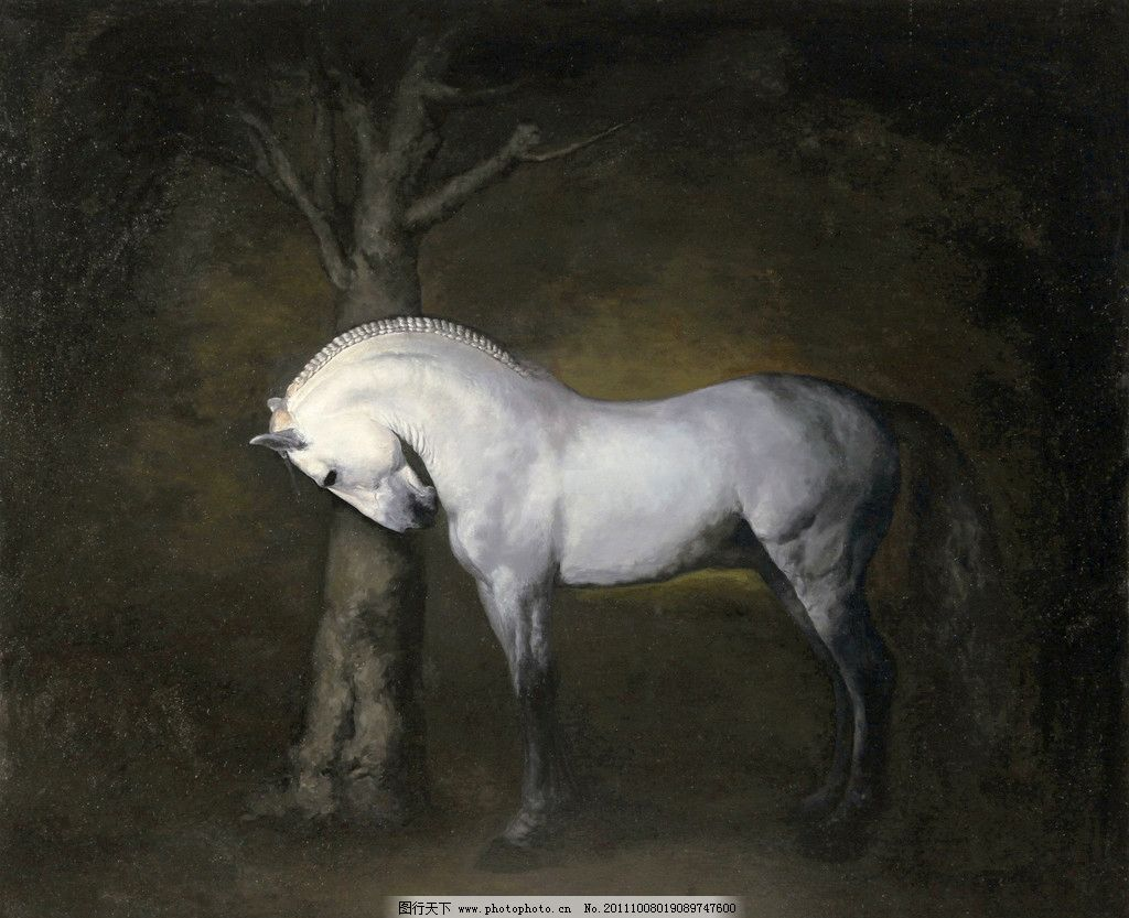 白马 美术 绘画 油画 动物画 马 大白马 油画艺术 油画作品22 绘画