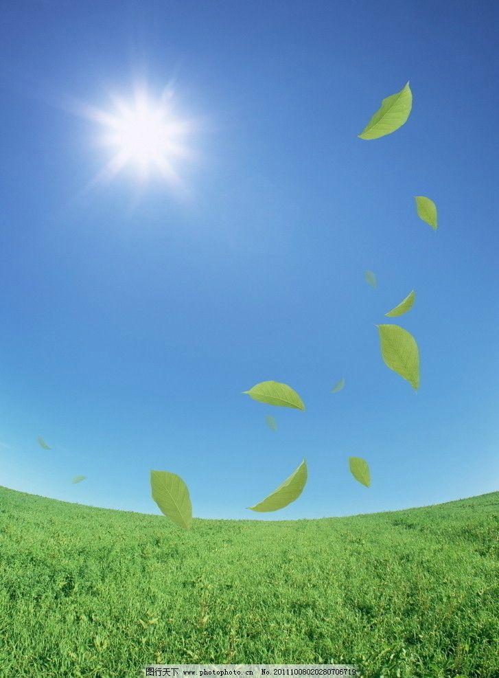 蓝天 树叶 太阳 背景底纹 底纹边框 设计 350dpi jpg