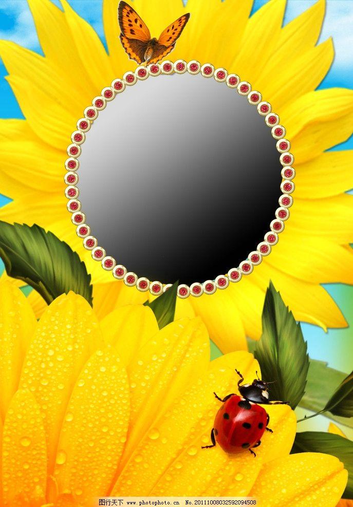 向日葵 相框图片