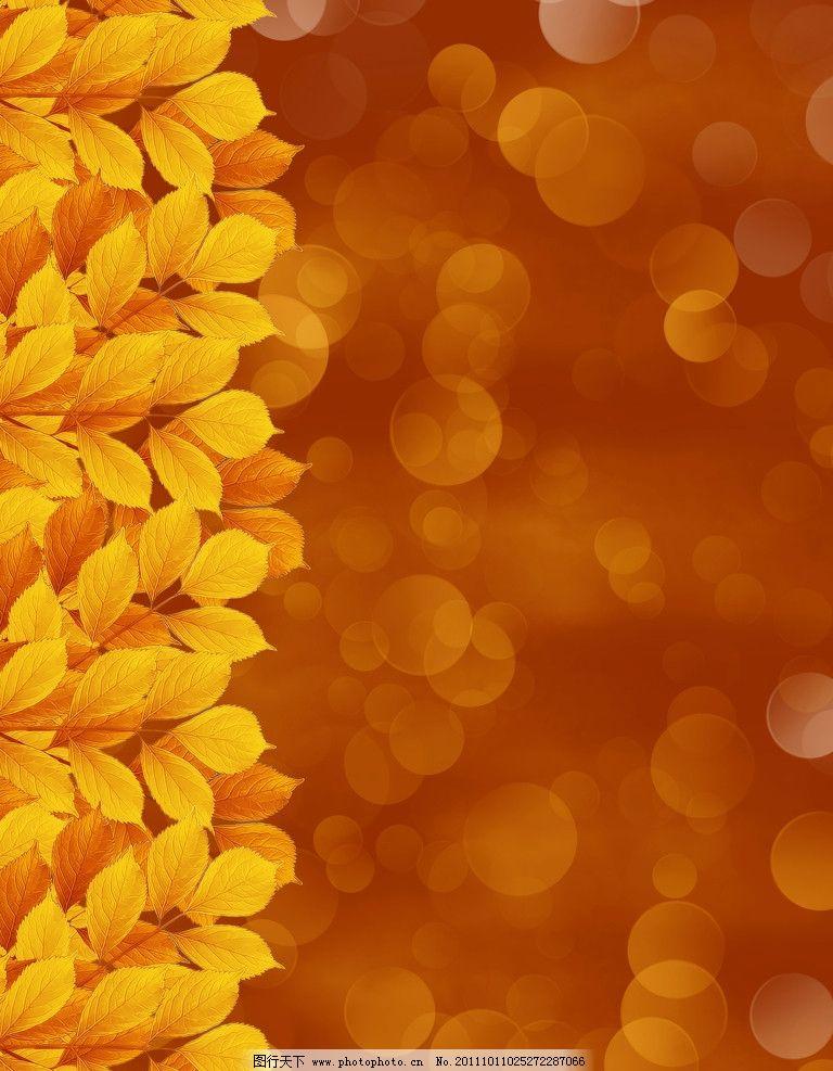 秋天的树子 树叶相框 树叶边框 梦幻光斑 金色叶子 树叶 金黄色树叶