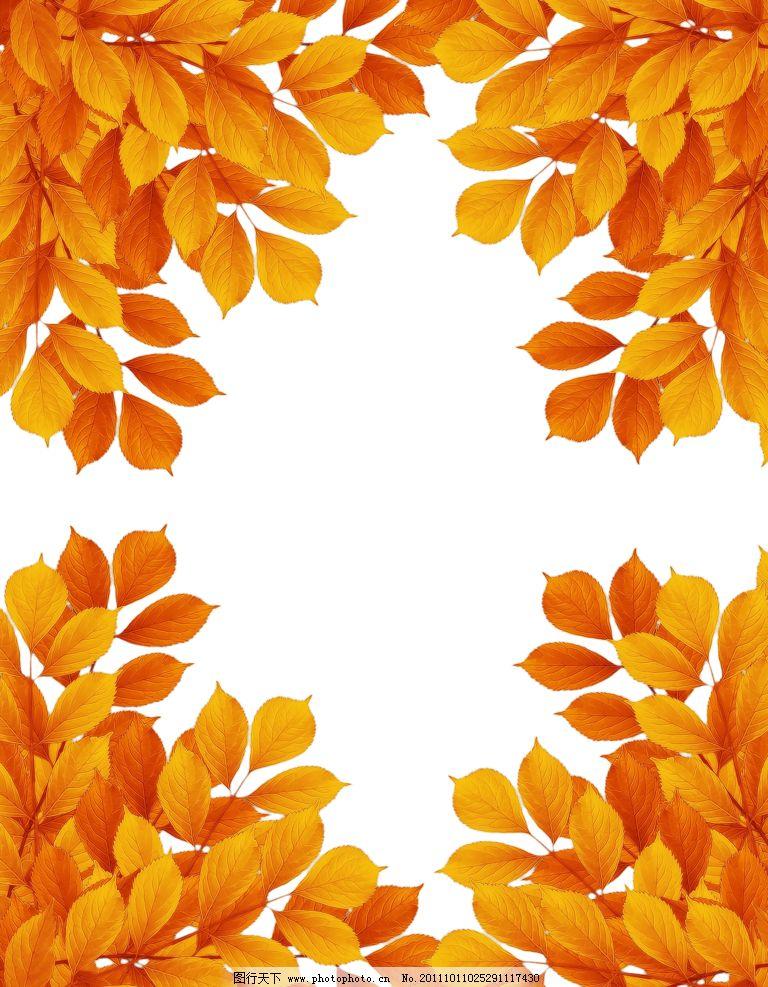树叶边框 树叶相框 秋天的叶子 金色叶子 树叶 金黄色树叶 树木树叶
