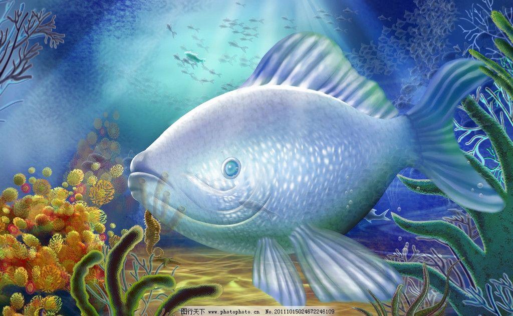 海底世界 珊瑚 海洋 鱼 海星 各种珊瑚礁 海藻 墨鱼 群鱼 水泡泡 动植图片