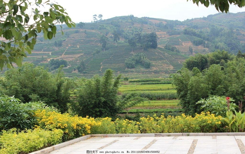 山坡风景图片