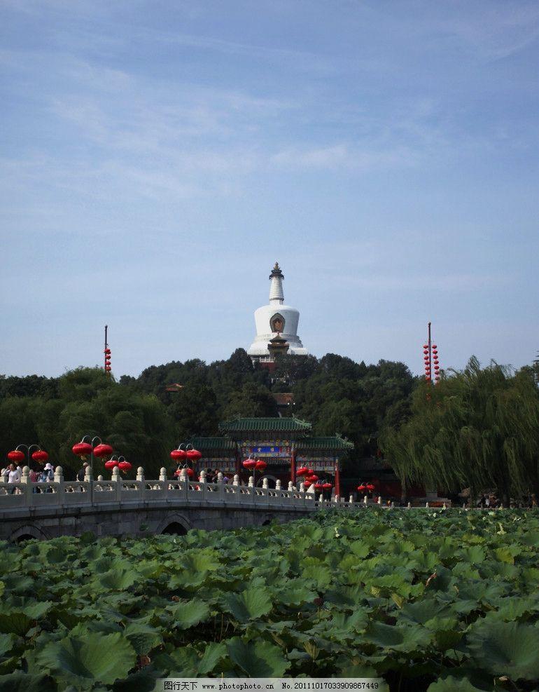 北海 北京旅游 北京风光 北京北海 北海公园 北海白塔 北海荷塘 荷叶