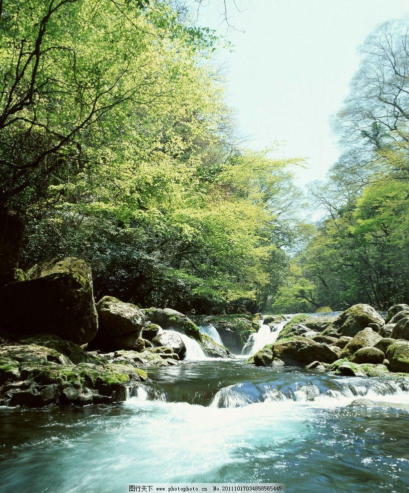 瀑布图片,自然生态 流水 水流 青苔 森林瀑布 树林-图