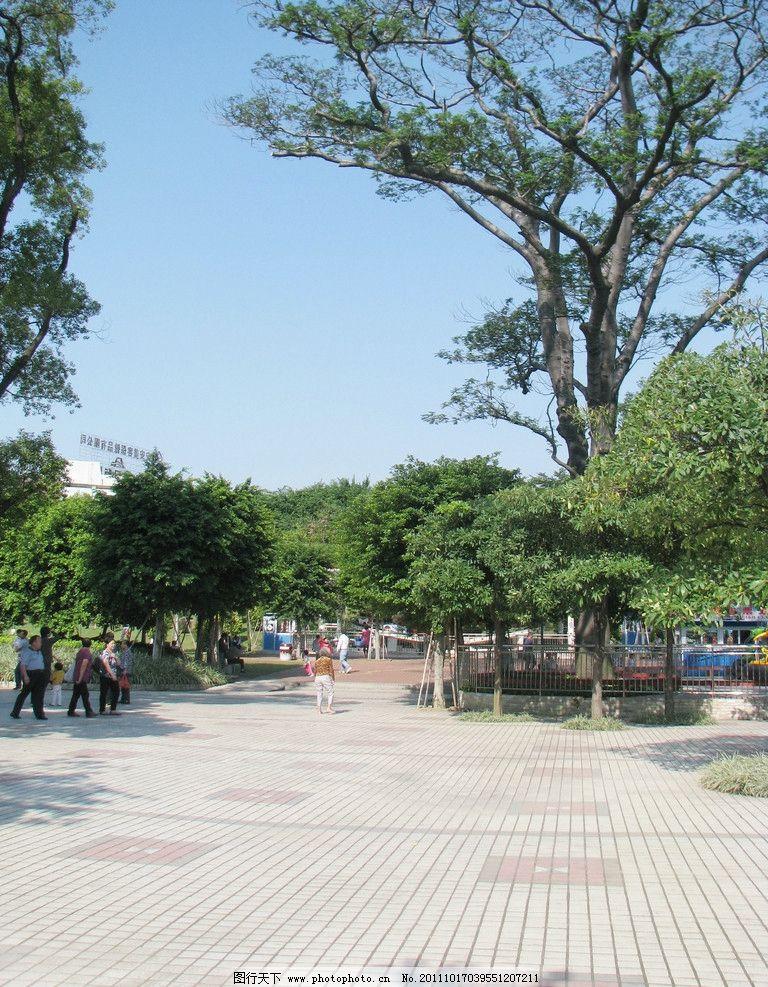 公园广场砖 广场砖 广场铺石 瓷砖 公园 绿色 大树 假日 休闲 摄影