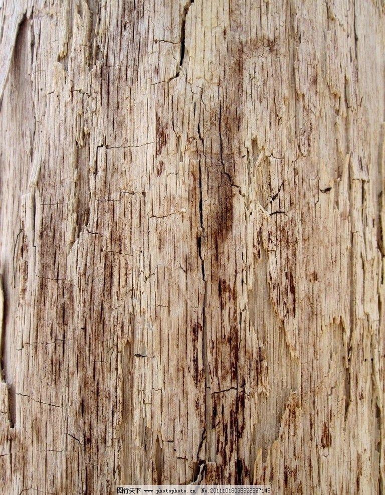 老木头图片大全