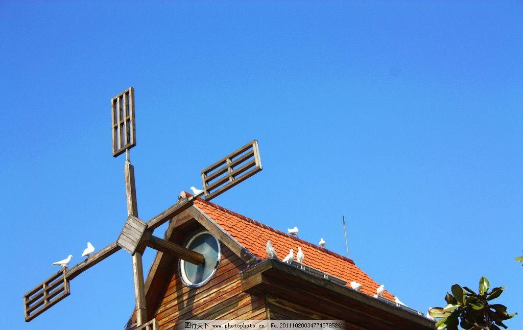 風車房子 風車 房子 鴿子