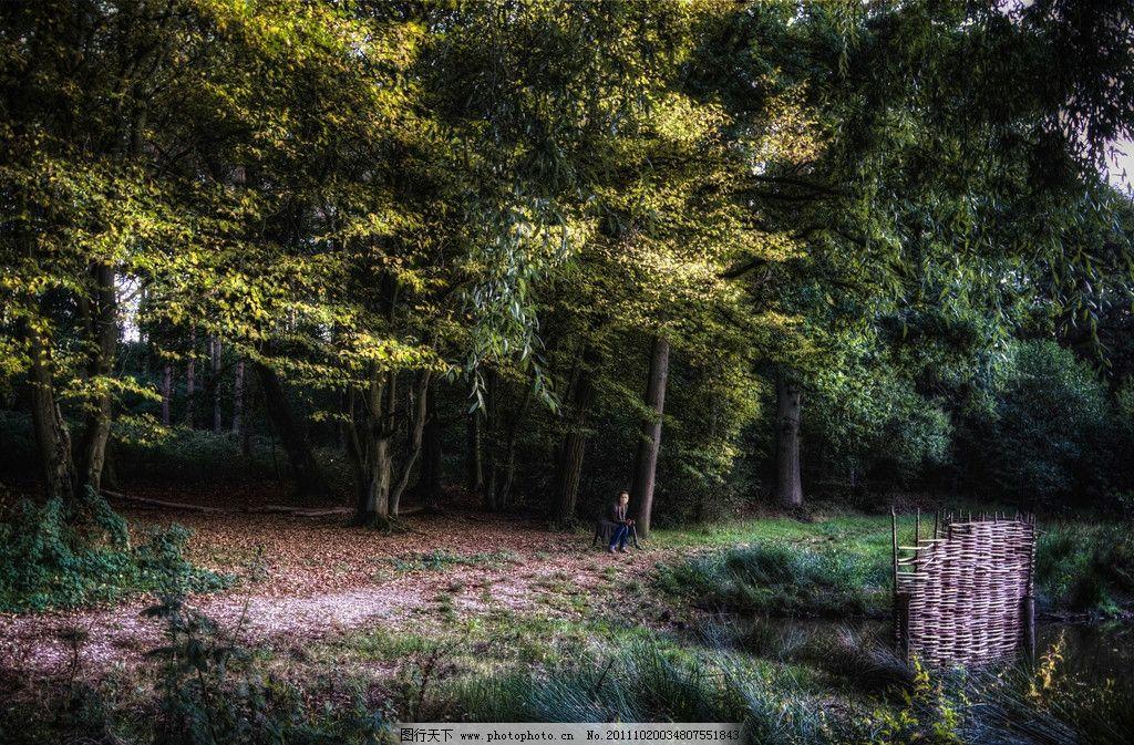 乡间小路 乡间 土路 乡村 小路 树林 密林 落叶 草地 野草 荒草 篱笆