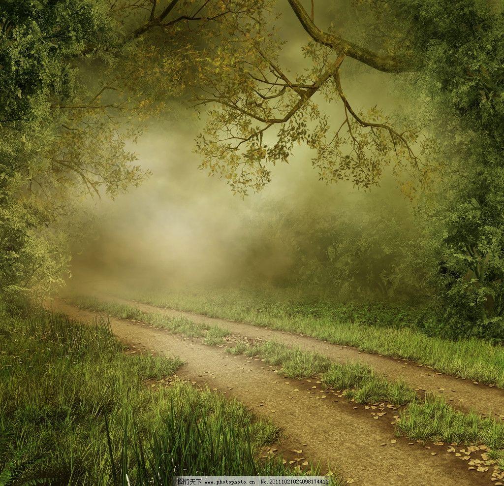 晨曦 田园 树木 道路 土路 路边风景 路 雾 田园风光 自然景观 自然