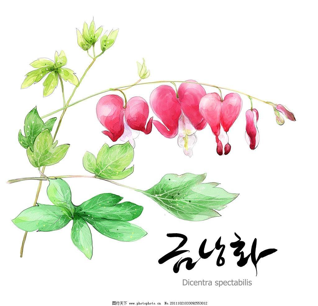 可爱手绘花朵 铃兰 心形 红色 绿叶 大叶子 韩国 韩语 凌乱
