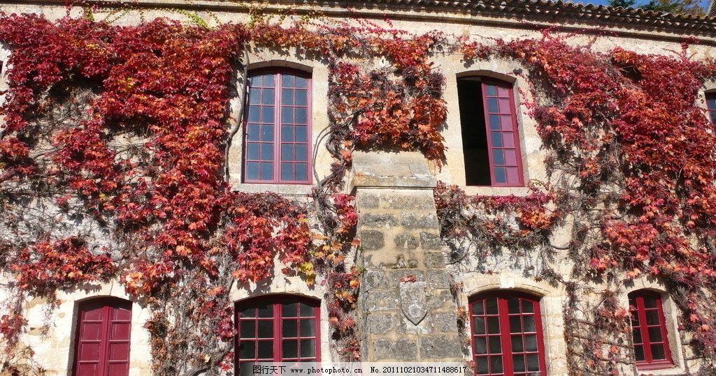 欧洲风景 枫叶 红房子图片