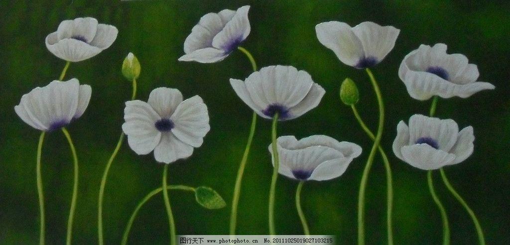 手绘花卉 家居装饰画 无框画 纯手绘 花卉油画 白色花卉 绘画书法