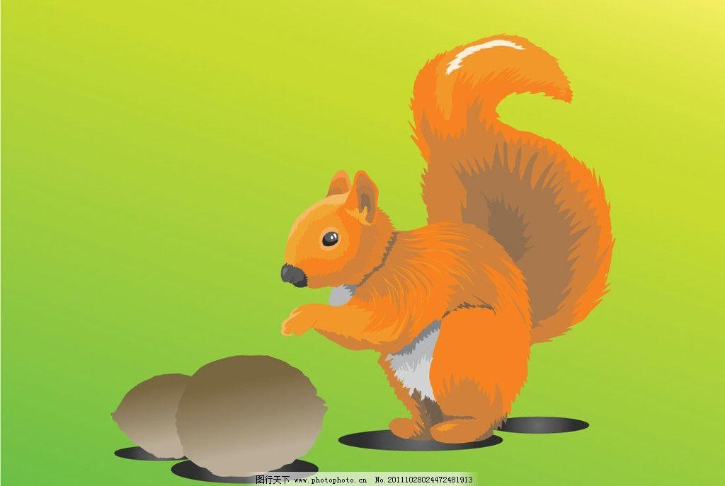 松鼠栗子 矢量 动物矢量图 爱护动物 动物素材 动物绘画 动物世界