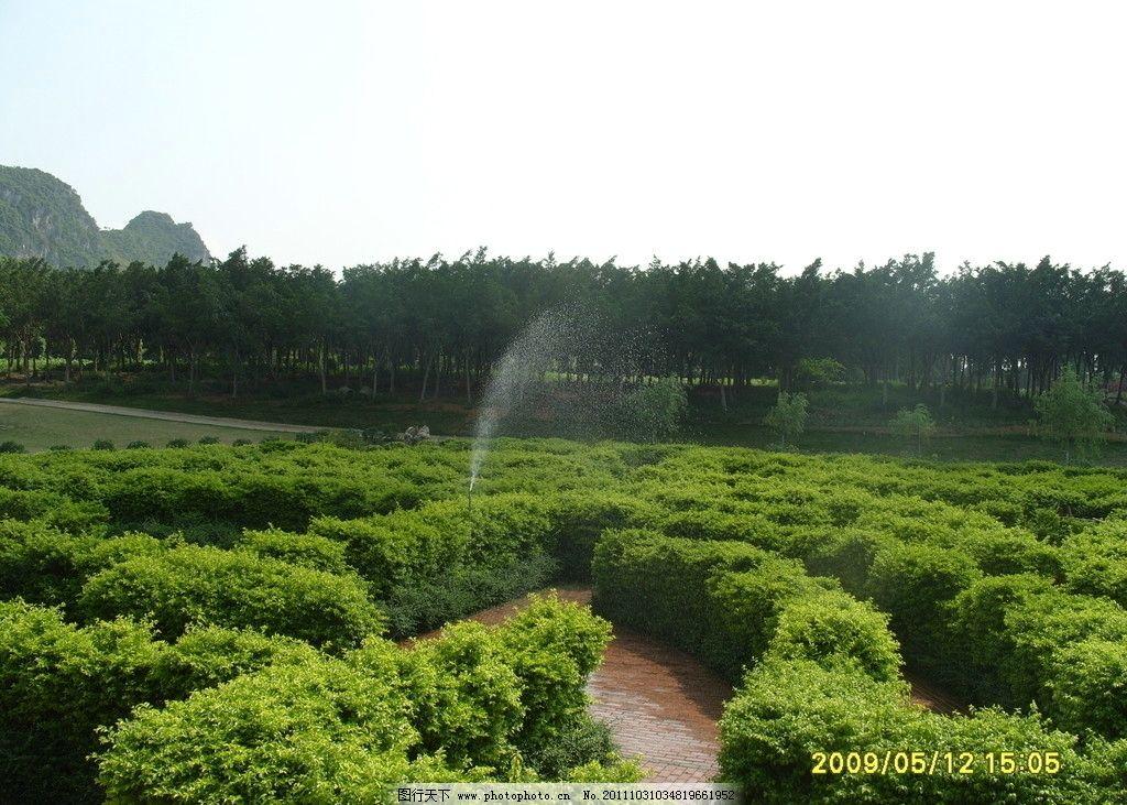 家乡的山水 风景 公园 远山 迷宫 绿树 自然风景 自然景观 摄影 96dpi