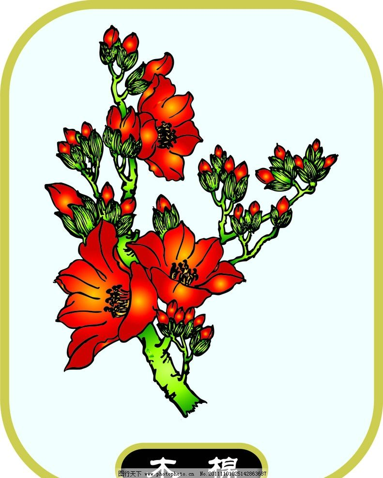 木棉 植物 花草 花卉 生物世界 矢量 cdr