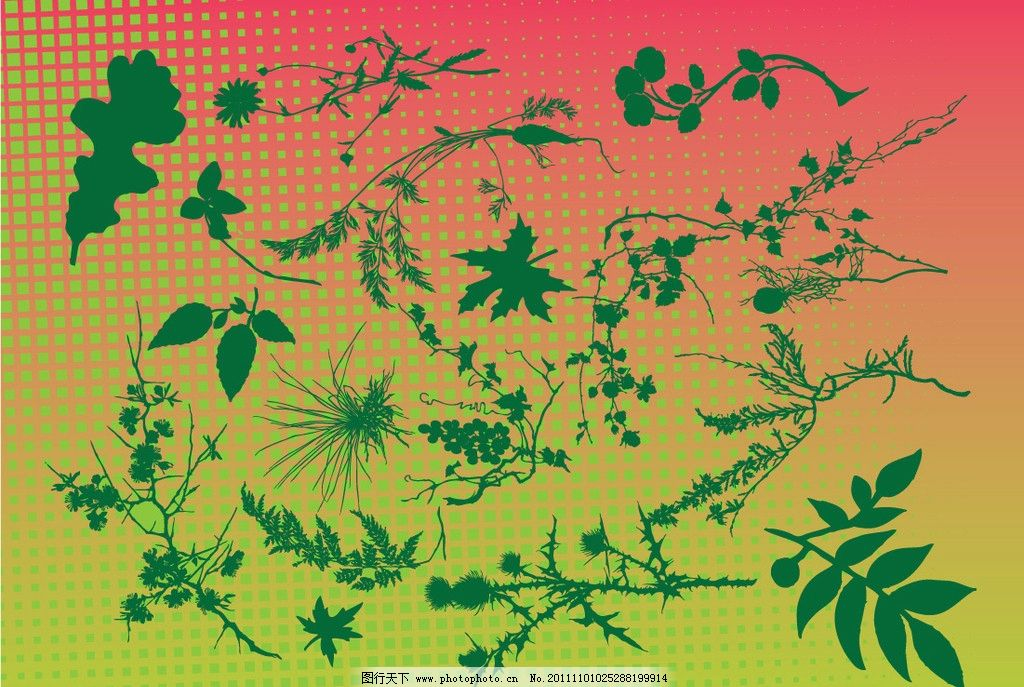 叶子树枝矢量图片图片