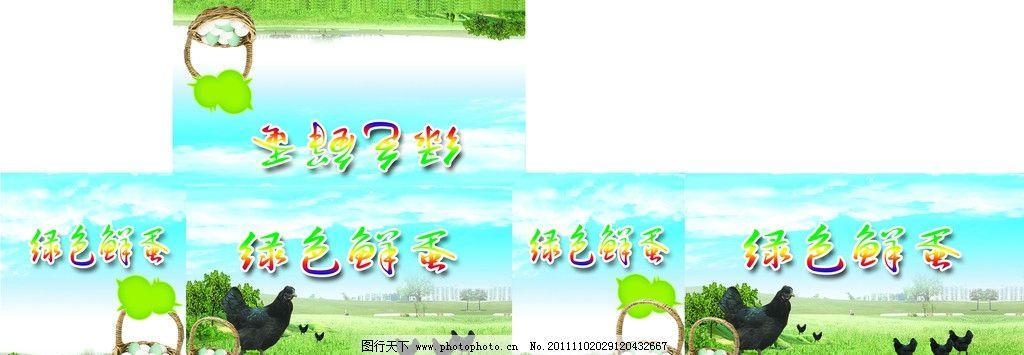绿色鲜蛋 乌鸡 广告设计模板 源文件