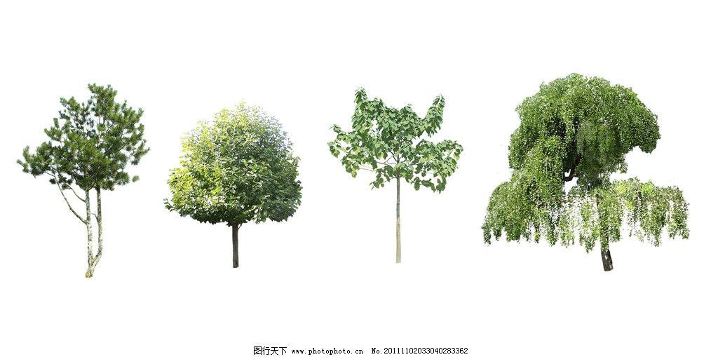 设计图库 psd分层 其他  树木 园林装饰树木 松树 柳树 桂花树 榕树