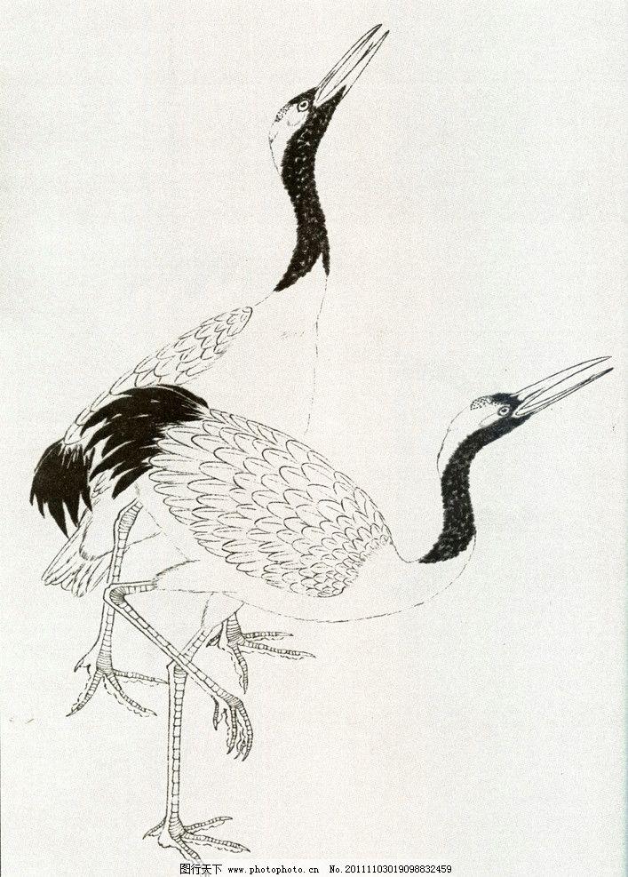 工笔鹤(有网点) 工笔画 鹤 绘画 现代 国画 丹顶鹤 绘画书法 文化艺术
