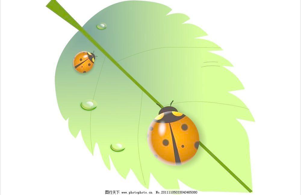 广告设计 卡通 昆虫 绿色 七星瓢虫 生物世界 矢量图 树叶 水滴 七星