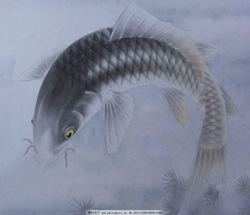 鲤鱼 水墨鲤鱼 国画鲤鱼 工笔画 美术绘画 鱼类 水墨画 jpg 绘画书法