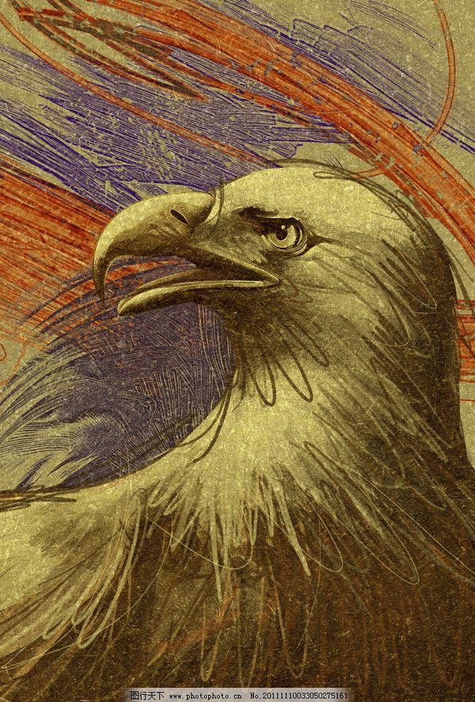 蜡笔画老鹰 卡通动物 老鹰 飞禽走兽 动物 蜡笔画 铅笔画 海报 设计