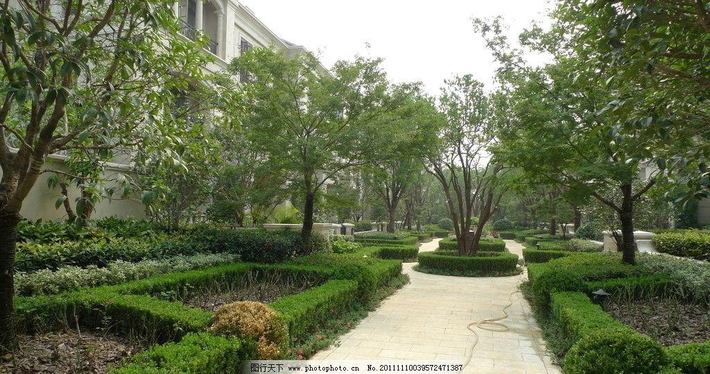 小区道路 欧式 园林 别墅 房地产 豪宅 景观 绿化 植物 灌木