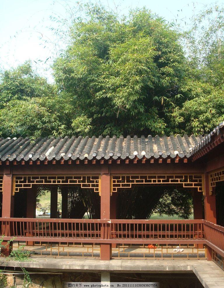 古典亭子 古典建筑 园林建筑 树木 竹子 竹林 园林景观 建筑摄影 自然