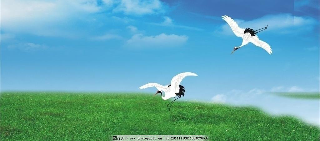 草原仙鹤 白云 背景画 草地 电视墙背景画 飞鸟 高原 个性墙纸