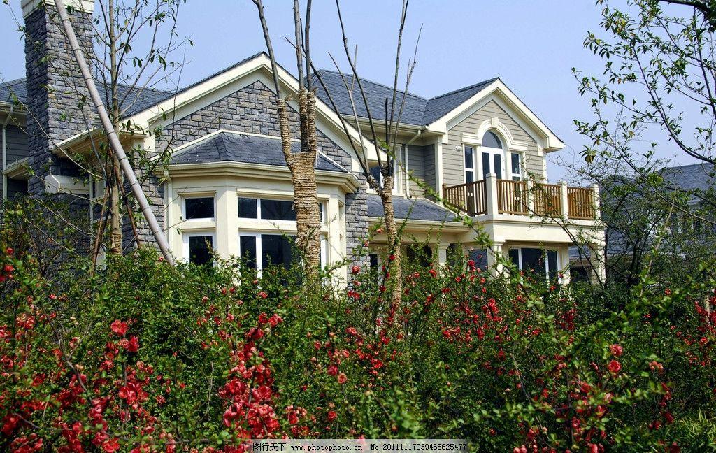 独栋别墅 别墅 红花 红色 花草 树木 窗户 园林 美观 大气 舒适 建筑