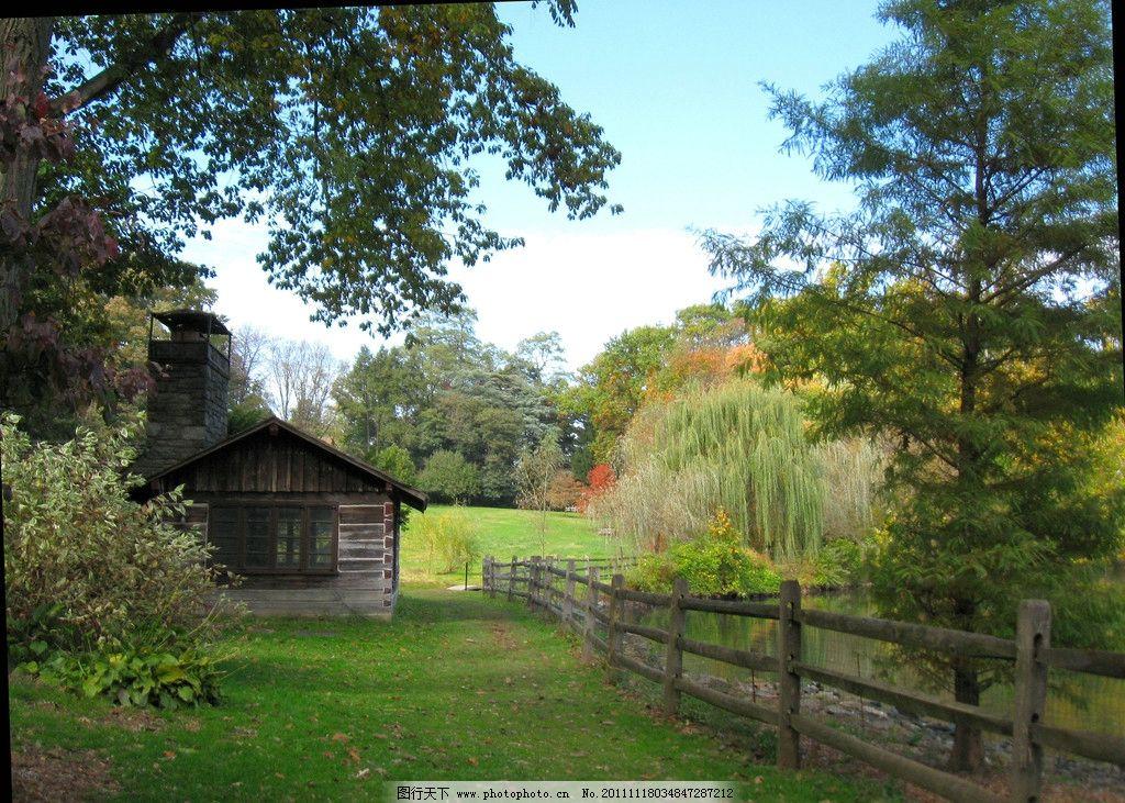 林中木屋 森林 绿色森林 木屋 天空 草地 绿色草地 大树木屋 自然风景
