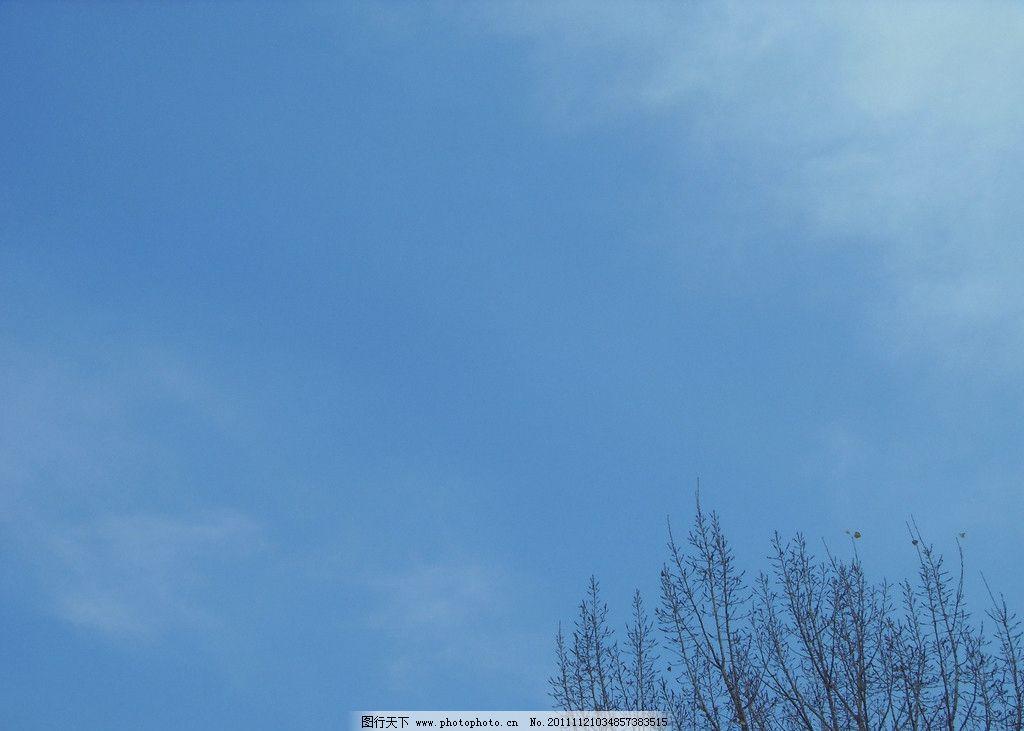 蓝天白云 蓝天 白云 树木