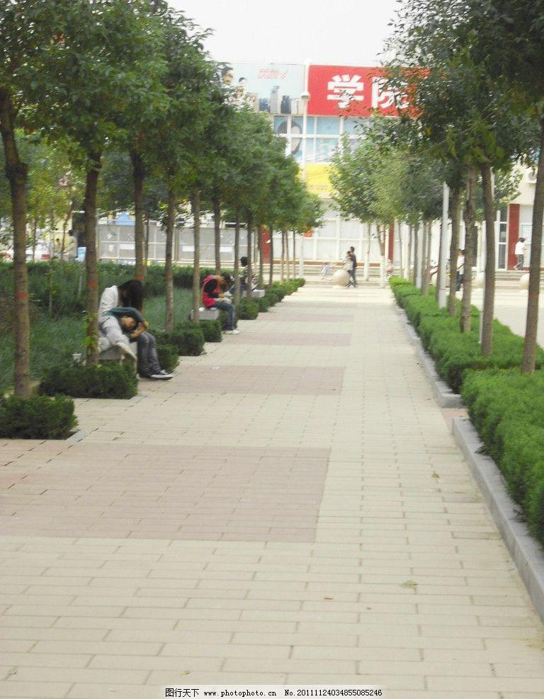 校园 园林 树林 草地 小路 自然风景 自然景观 摄影 72dpi jpg