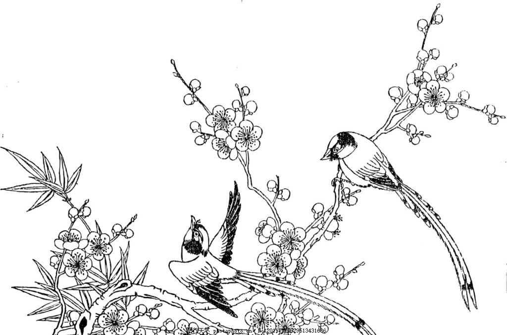 花鸟 梅花 喜鹊 中国画 矢量图 广告设计 矢量 cdr