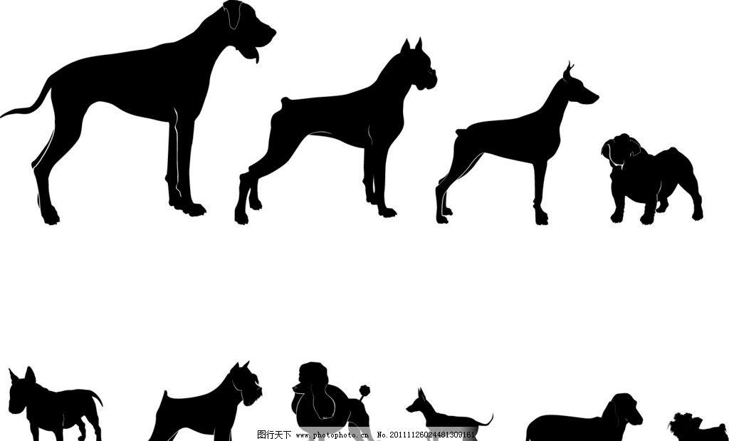 狗狗组图 大狗 小狗 矢量图 黑白 野生动物 生物世界 矢量 ai
