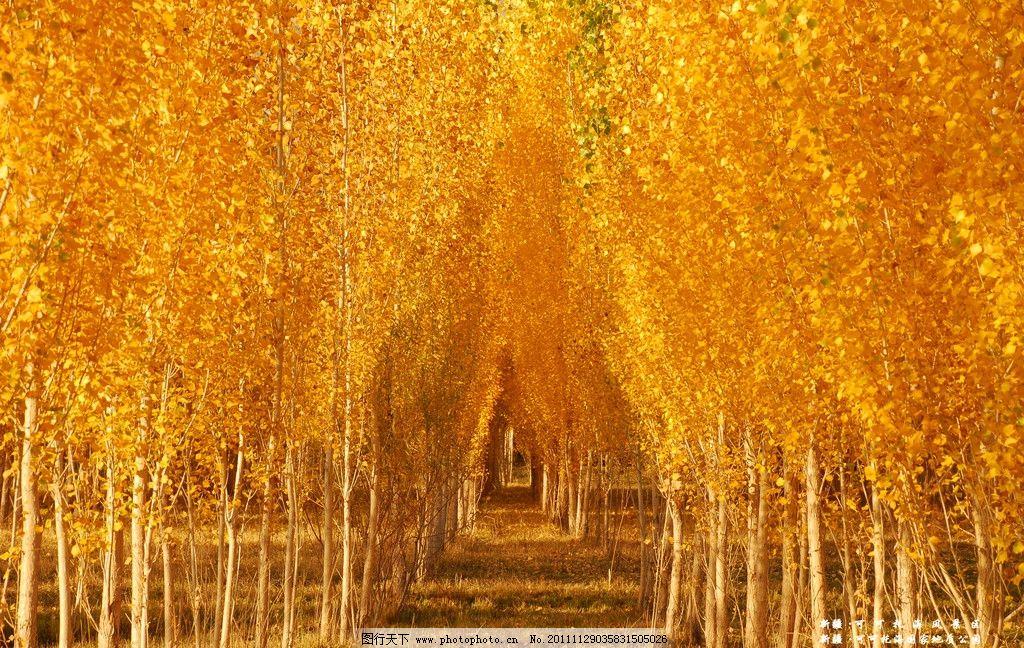 歌曲:秋天余风简谱
