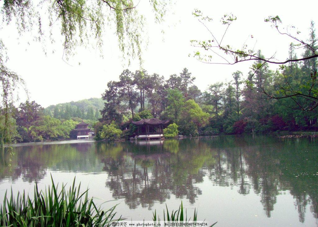 曲院风荷 湖图片