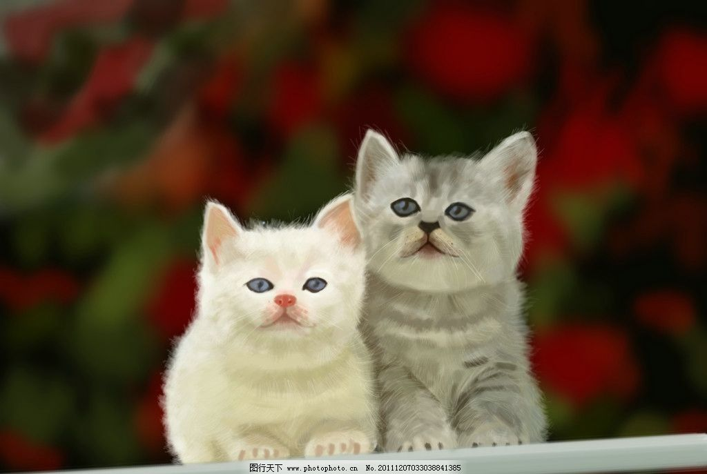 三只小猫古筝曲谱