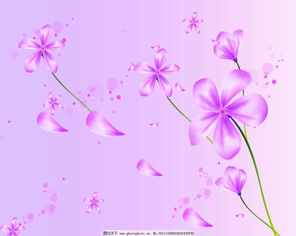 旅行中的紫色花朵儿图片