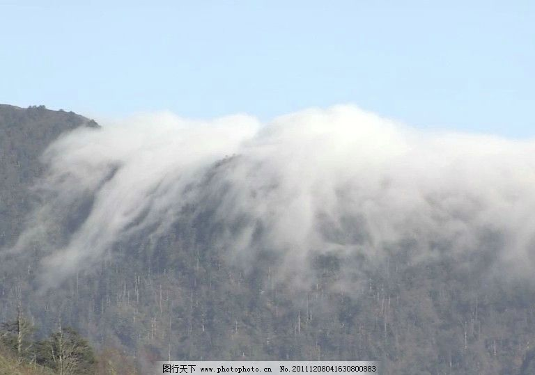 山雾翻滚 mov动态素材 山雾缭绕 树林 树木 绿草 绿树 山峰 青山 草地
