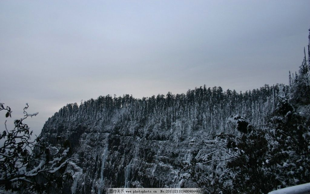 瓦屋山 冬景 森林 冰雪 森林公园 国内旅游 自然风光 南国冰雪
