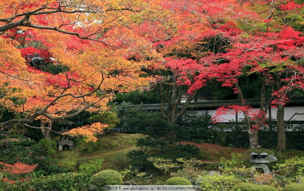 园林 日式园林 日式花园 公园 古建筑 人工湖 石头 水池 园林设计