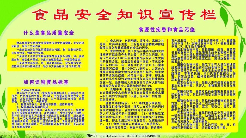 食品安全知识宣传板 绿色背景 宣传栏 食品 安全 展板模板 广告设计