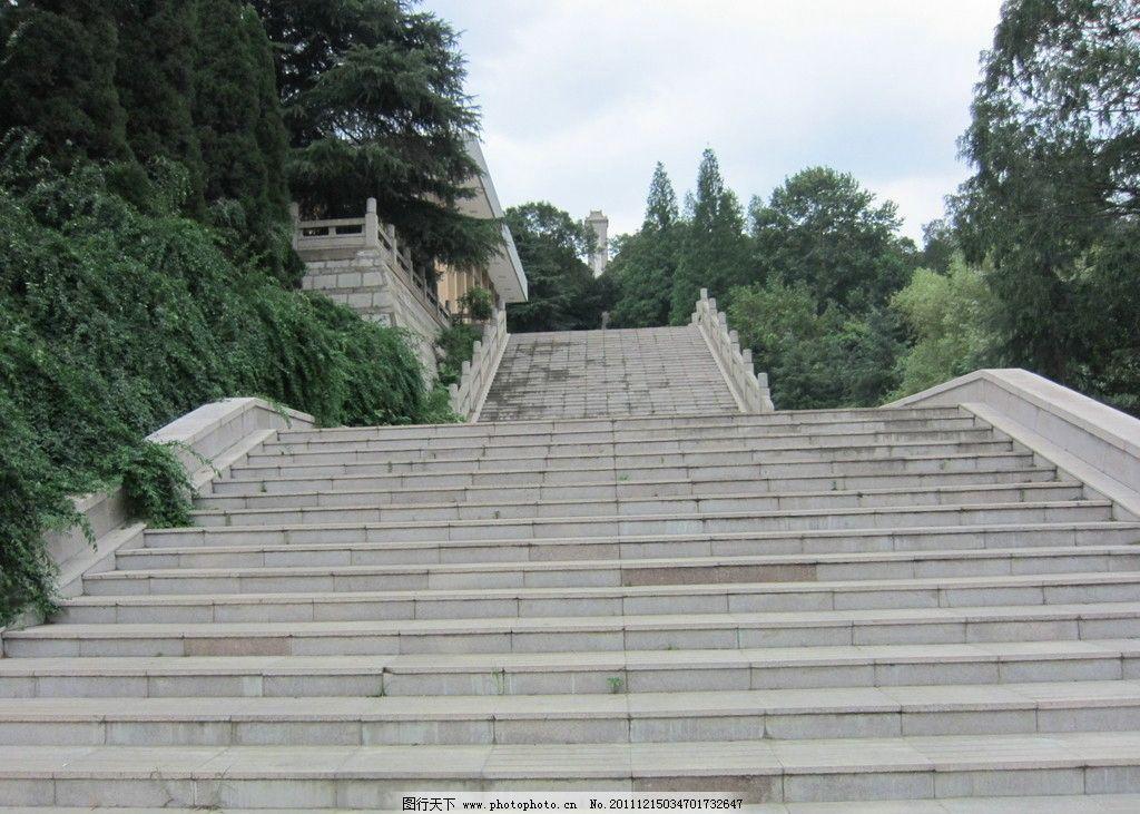 楼梯 阳光 景观 建筑 植物 阶梯 风景透视 自然风景 旅游摄影