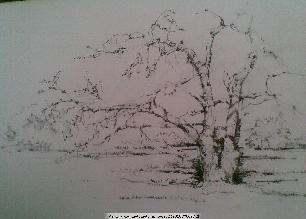風景速寫 速寫 風景 大樹 樹木 美術繪畫 文化藝術 攝影 300dpi jpg