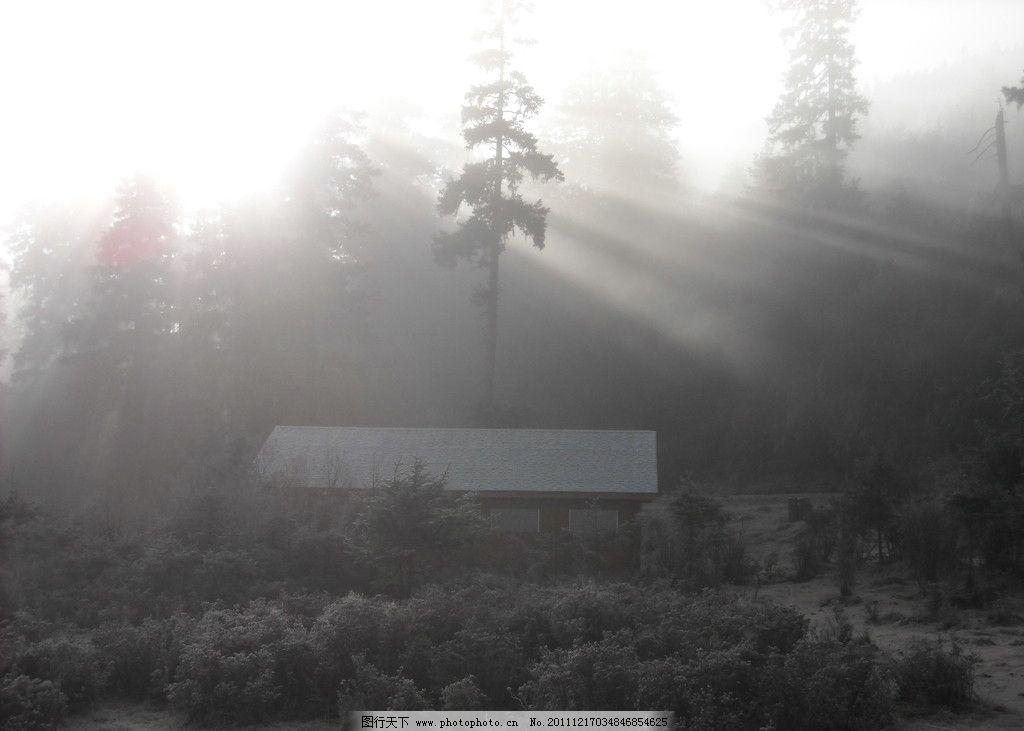 云雾晨曦 云雾 晨曦 阳光 普达措国家公园 茅屋 森林 自然风景 自然