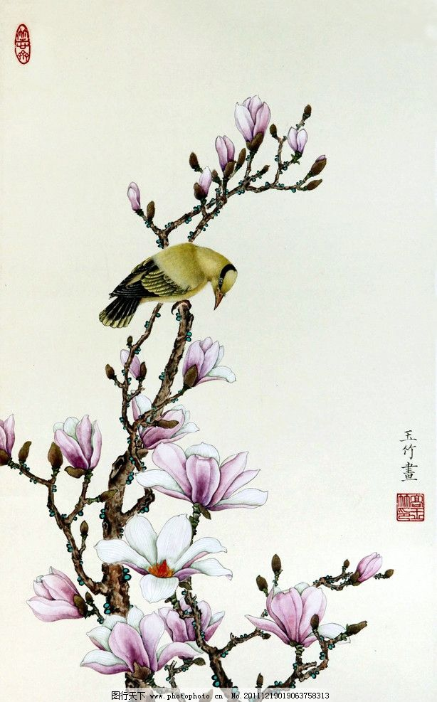 美术 绘画 中国画 彩墨画 工笔画 花鸟画 玉兰花 黄鹂 国画艺术 国画